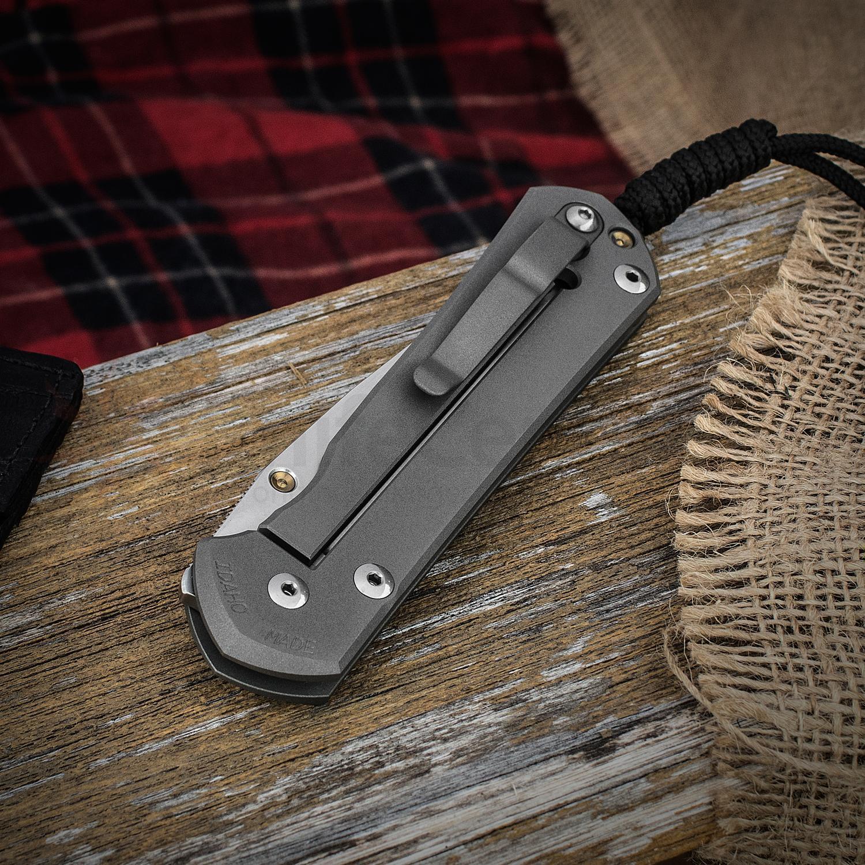 Нож складной Chris Reeve Large Sebenza 21 CGG Leopard