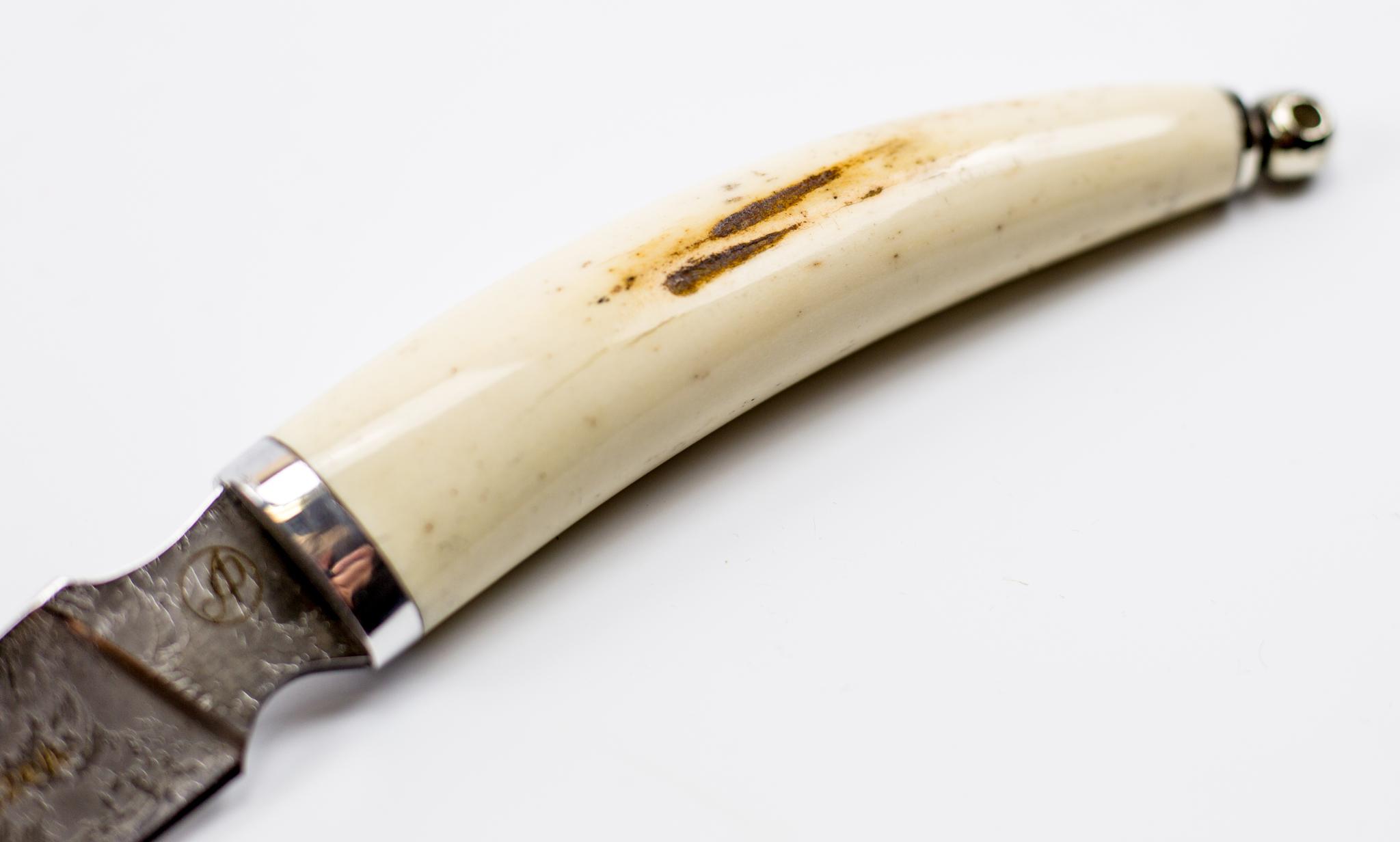Фото 2 - Нож Рысь малютка, сталь Х12МФ, рог лося от Ножи Фурсач