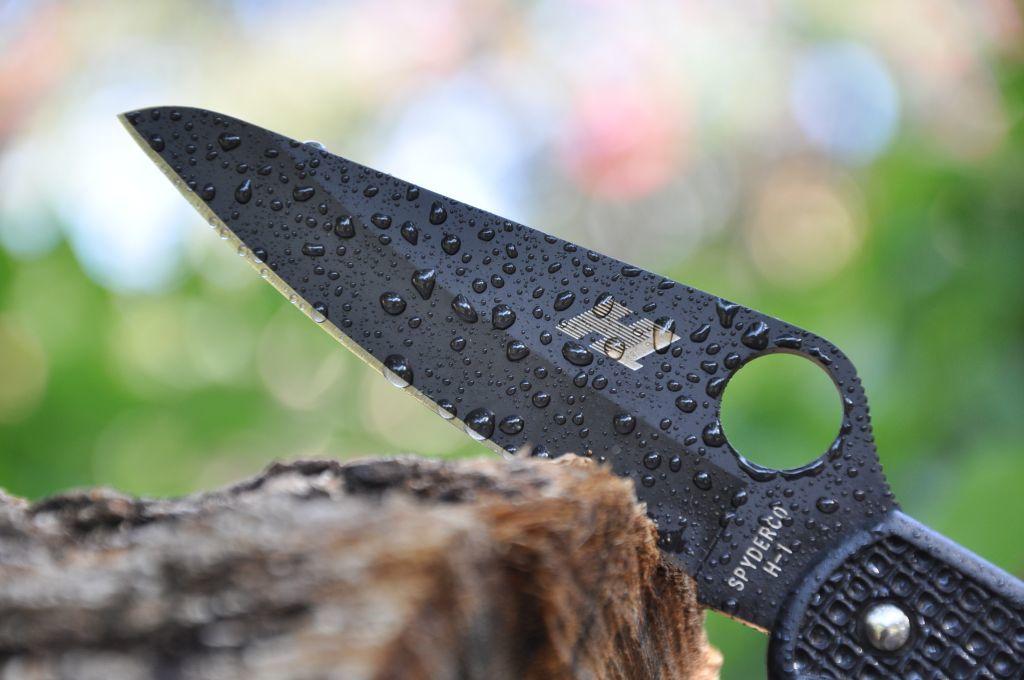 Фото 3 - Нож складной Pacific Salt Spyderco 91PBBK, сталь H1 Black Carbonitride Plain, рукоять термопластик FRN, чёрный