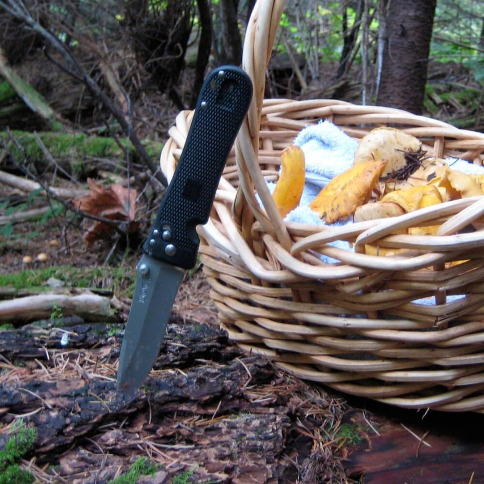 Фото 4 - Складной нож Spec Elite I - SOG SE14 10.2 см., сталь VG-10, рукоять пластик GRN