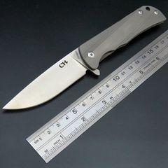 Складной нож CH3001 Silver, сталь D2, фото 1