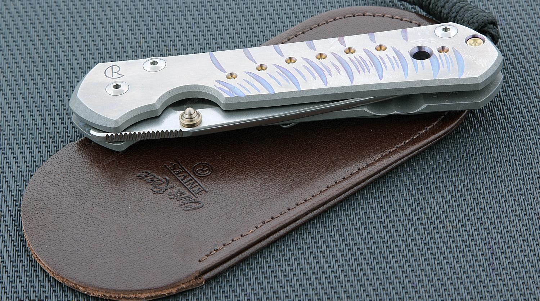Фото 10 - Нож складной Chris Reeve Large Sebenza 21 L21CGGUN See, сталь CPM S35VN, рукоять титан