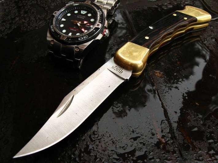 Фото 4 - Складной нож Buck Folding Hunter с выемками 0110BRSFG, сталь 420НС, рукоять дерево