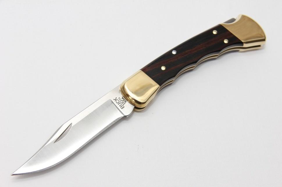 Фото 5 - Складной нож Buck Folding Hunter с выемками 0110BRSFG, сталь 420НС, рукоять дерево
