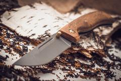 Складной нож Валдай, сталь 95х18, орех, фото 3