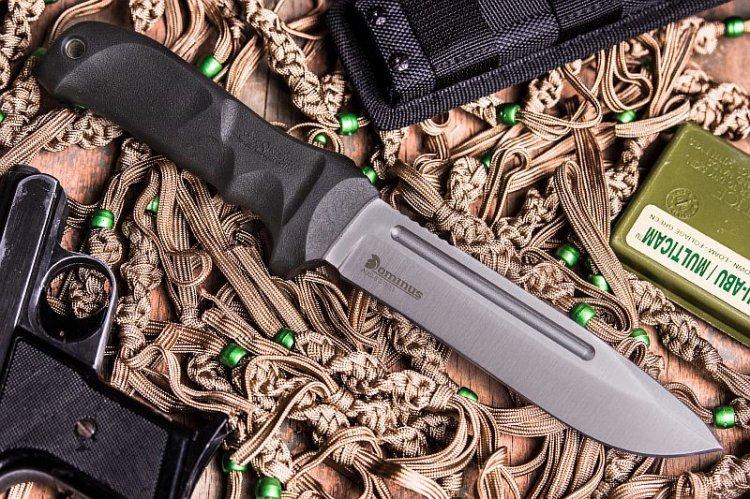 Фото 9 - Нож Dominus AUS-8 SW, Kizlyar Supreme