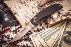 Складной нож Ganzo G733, черный