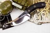 Нож Клык-1, сталь 95х18, дерево - купить в интернет магазине