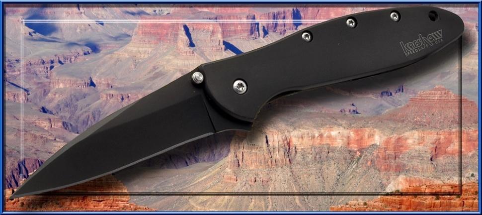 Фото 8 - Складной нож Leek - KERSHAW 1660CKT, сталь Sandvik™ 14C28N с покрытием DLC, рукоять нержавеющая сталь 410, чёрный
