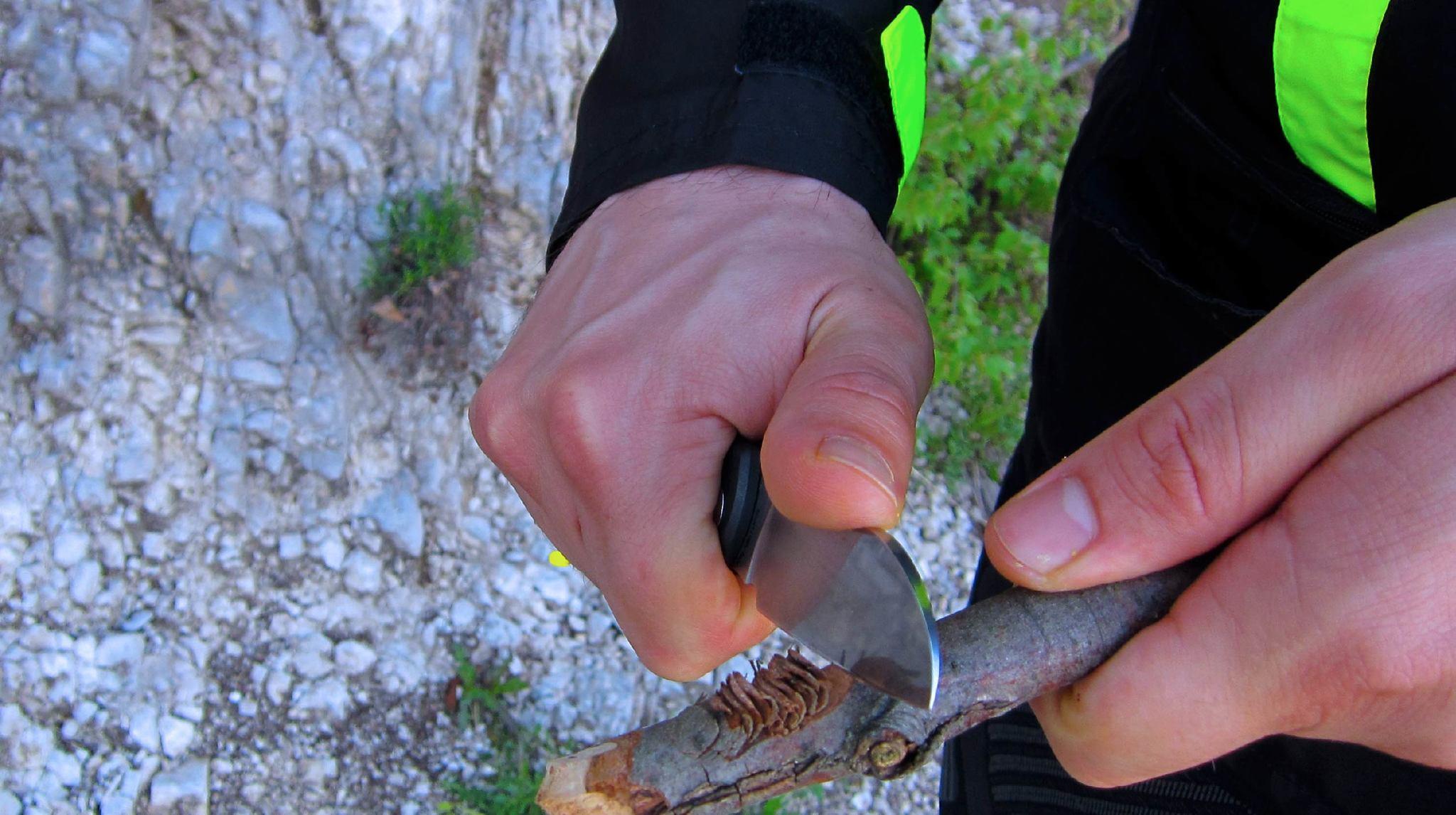 Фото 14 - Нож складной Fantoni, Raggio, FAN/NilteRAGGIO, сталь Sandvik 14C28N, рукоять Ixef, чёрный